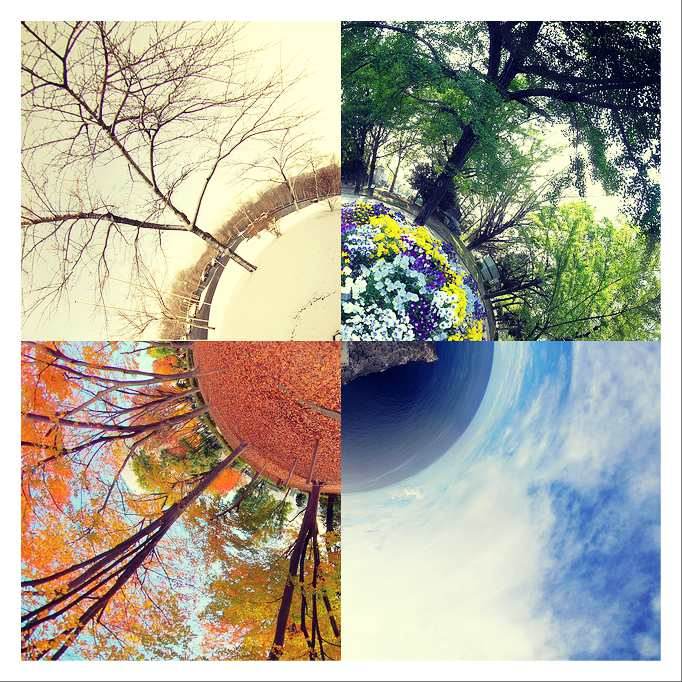 four seasons in japan spring winter fall summer