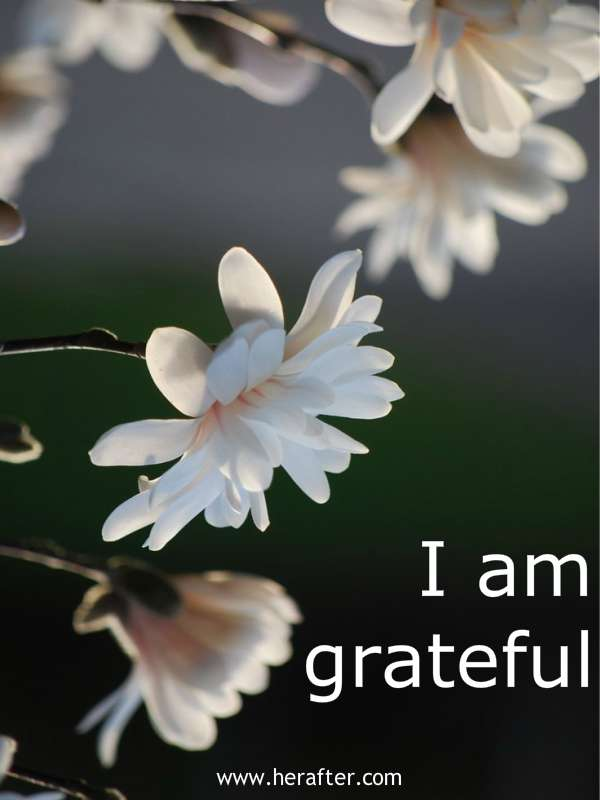 mantra-for-gratitude-happiness